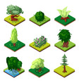 Public park decorative trees isometric 3d set vector image