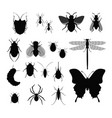 set of insects collection of vector image