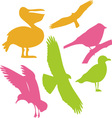 Birds Digital Clipart 1 vector image vector image