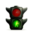 Green light vector image vector image