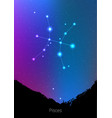 pisces zodiac constellations sign with forest vector image vector image