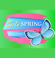 sale spring discount blue butterfly with dot wings vector image