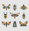 set colorful insects with hand drawn vector image