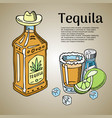 tequila bar banner poster vector image vector image