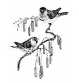 Birds on twig sketch vector image vector image
