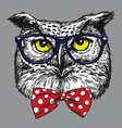 Hipster Owl with glasses and bow tie vector image vector image