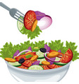 salad vegetables organic food harvest vector image