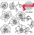 set of hand drawn orchid branches with flowers vector image vector image