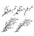 set tree branch branch silhouette isolated vector image vector image