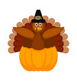 turkey with pilgrim hat and a pumpkin icon vector image vector image