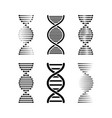 dna or chromosome abstract strand symbol set vector image vector image