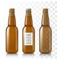 Empty glass bottles vector image vector image