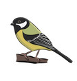 hand drawn bird great tit vector image