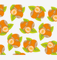 nut hazelnut pattern vector image vector image