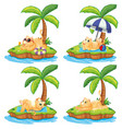 set of lazy cat on island vector image