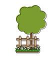 tree in garden vector image vector image