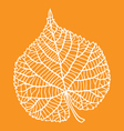 dry leaf autumn vector image vector image