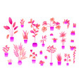 neon flowers and plants in pots isolated on white vector image
