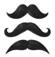 realistic moustaches black mustache facial hair vector image