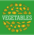 vegetables color icons in a circular shape vector image vector image