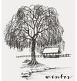 Winter sketch willow tree