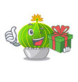 with gift cartoon notocactus fuscus with beautiful vector image