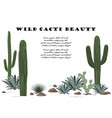 background with cactuses and succulents set vector image vector image