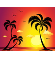 beach with palm trees at sunset vector image vector image