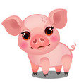 little animated pig isolated on white background vector image vector image