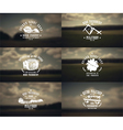Military emblems and blurred background vector image vector image