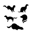 Mink silhouettes vector image vector image