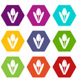 tulip icon set color hexahedron vector image vector image