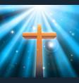 christian religion cross vector image