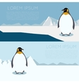 Antarctic banner1 vector image