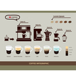 coffee infographic elements types coffee drinks vector image vector image