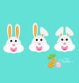 cute rabbit or bunny head vector image