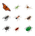 isolated object insect and fly logo set of vector image vector image