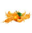 splash fruit juice and fresh mandarins vector image vector image