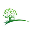 symbol green forest vector image vector image