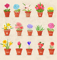 vintage collection of cute flowerpots with flowers vector image vector image