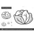 White cabbage line icon vector image
