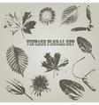 Vintage Style Floral Elements vector image