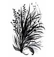 Beautiful hand-drawn monochrome herbs vector image vector image
