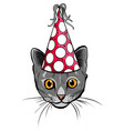 birthday cards set with cute cartoon cats vector image vector image