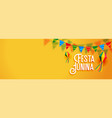 festa junina latin american holiday banner vector image vector image