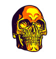 golden human skull head on white background vector image