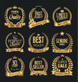 luxury white labels collection 5 vector image vector image