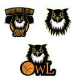 Retro owl logo basketball team vector image vector image