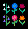 abstract floral elements gradient bright flower vector image vector image