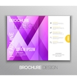 Abstract template brochure design with geometric vector image vector image